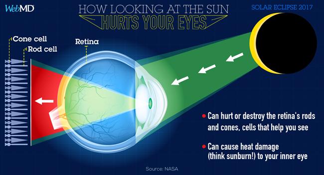 pericoloso osservare il sole